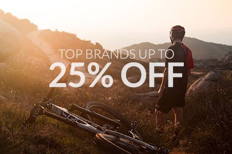 Holiday Brand Promotions